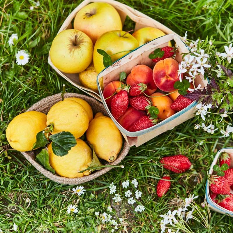 Mon Bio Gourmand - desserts aux fruits bio français